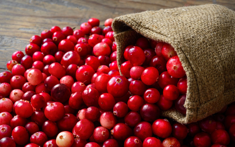 Cranberry Twist Juice Recipe