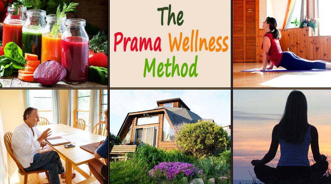 What is the Prama Wellness Method?